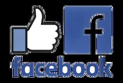 rsz_facebook_like
