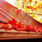 Metal Roofing Autumn Leaves