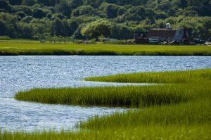 Marshfield, MA River